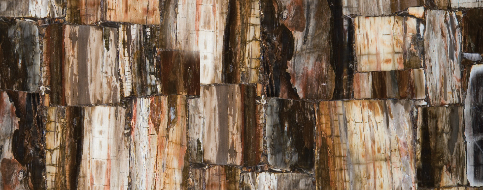 Caesarstone 8331 Petrified Wood Retro